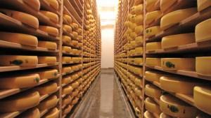 Meules de fromage de la Fromagerie de la Combe du Val