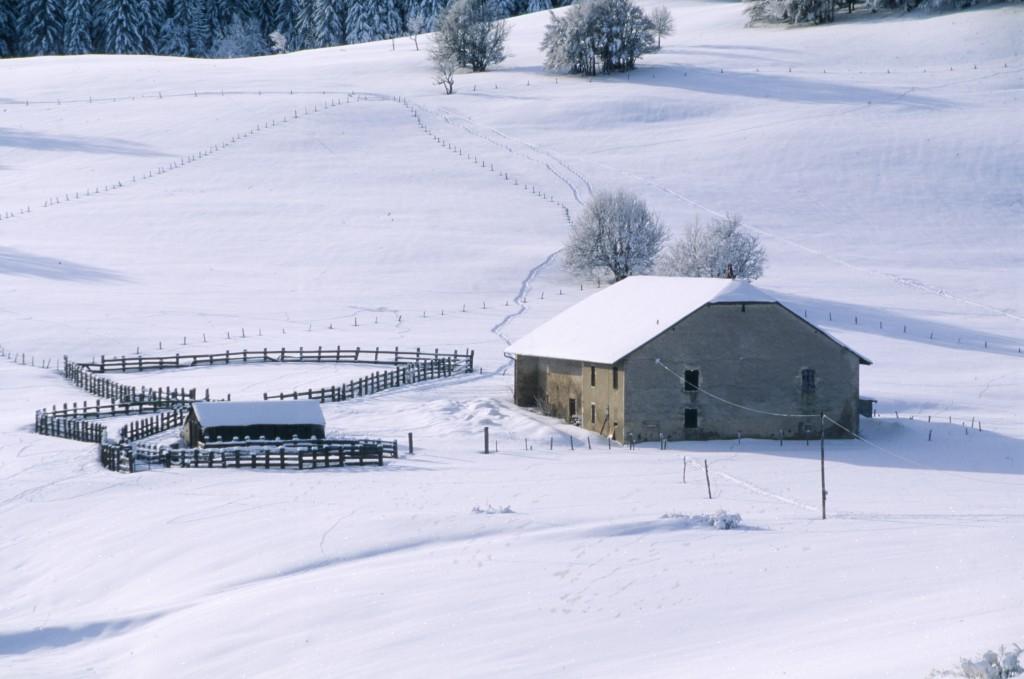 Plateau-du-Retord-enneigé