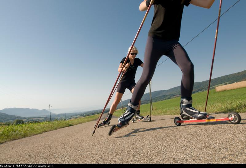 Ski-roues